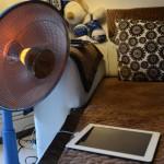 え!iPadは寒いと充電できない?だから温めると良いって本当?