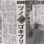 関東でツノゴキブリが繁殖中のニュースがTwitterで話題に