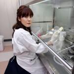 【STAP細胞】小保方晴子さん高校でも凄かった!松戸市出身のかわいい研究者