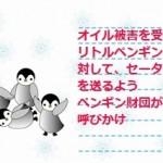 オイル被害を受けたリトルペンギンに対して、セーターを送るようペンギン財団が呼びかけ