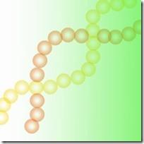 肥満に関連する遺伝子【IR3、FTO】が発見される2