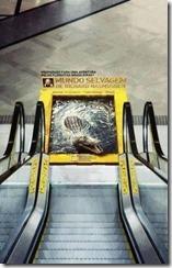 ナショジオのエスカレータ広告があまりに秀逸で思わず保存した nasyo2 thumb