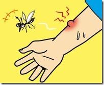 デング熱の症状は?赤ちゃん子供も2回目は危ない!その感染経路は?