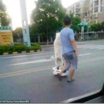 「セグウェイ」で犬の散歩をする男性が世界中で話題に