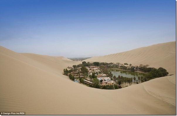 ペルーで最も乾燥した地域にある「砂漠のオアシス」があまりにも異次元過ぎると話題に de4e4e60 s thumb