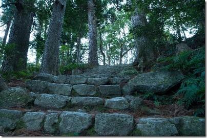 世界遺産紀伊山地の霊場と参詣道へのアクセス方法やグルメスポットは?