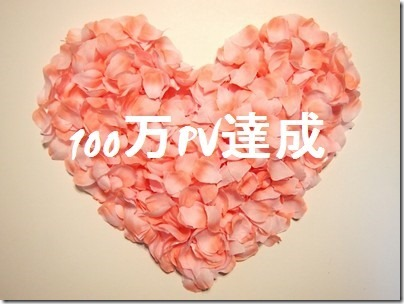 100万ページビュー達成!ありがとうございます! 100 thumb