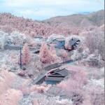 【悲報】わぁ桜と雪綺麗!→画像処理による加工写真だったことが判明