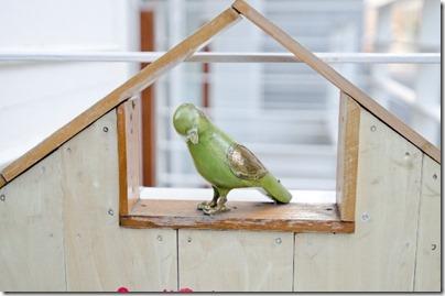 東京浅草の鳥カフェ「鳥のいるカフェ」を紹介!料金やルール注意点! thumb5